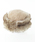 14+(イチヨンプラス)の「フェイクファーロシアントーク帽(ハット)」|詳細画像