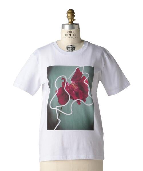 < LISA KING (リサ キング)> ROSETTA FLOWER TEEシャツ
