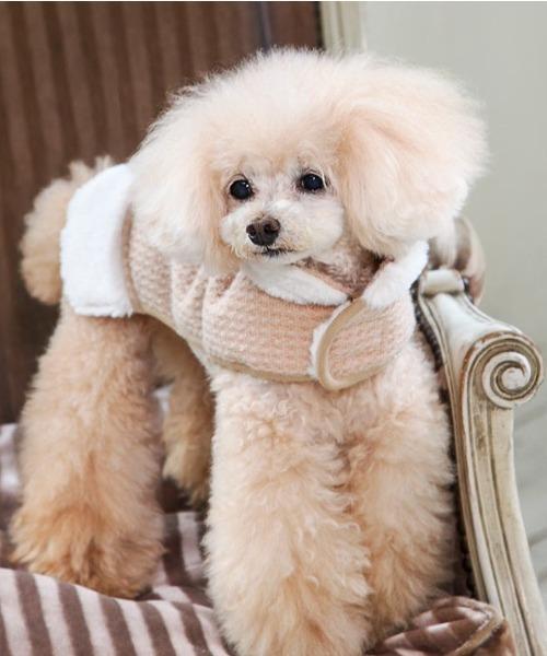 犬と生活/いぬとせいかつ/ウオームイージーコート/犬服(ドッグウェア)