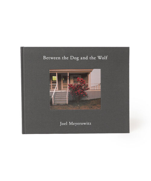Joel Meyerowitz / Between the Dog and the Wolf 2nd edition