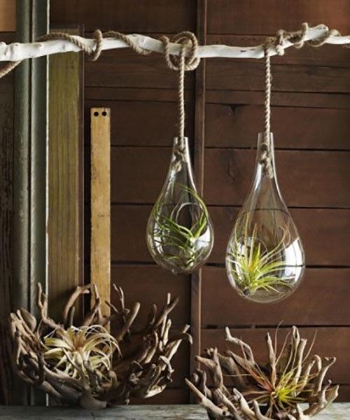 Roost Recycled Glass Bubble Hanging Terrarium ハンギングバブルテラリウム L