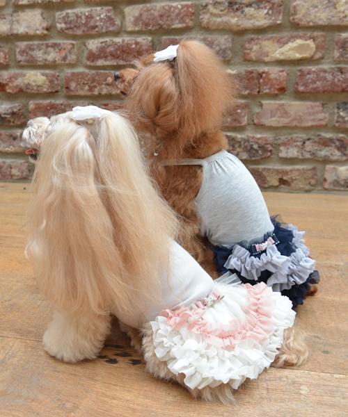 Glamourism/グラマーイズム/Celiaセリア/犬服(ドッグウェア)