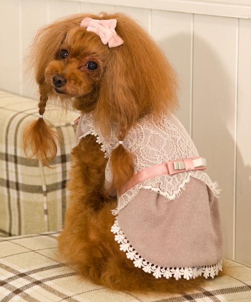 Glamourism/グラマーイズム/Shaylaシェイラ/犬服(ドッグウェア)