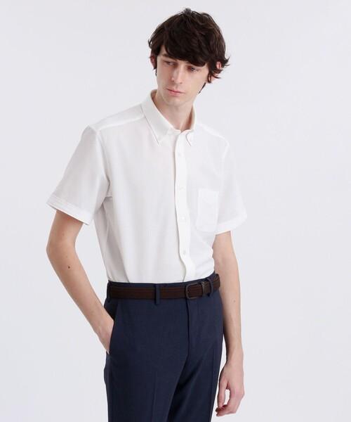 トロッターシャツ 半袖ボタンダウン サッカーストライプ