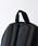 FREAK'S STORE(フリークスストア)の「WEB限定 EASTPAK/イーストパック PADDED PAK'R 24L パテッドパッカー      (バックパック/リュック)」|詳細画像