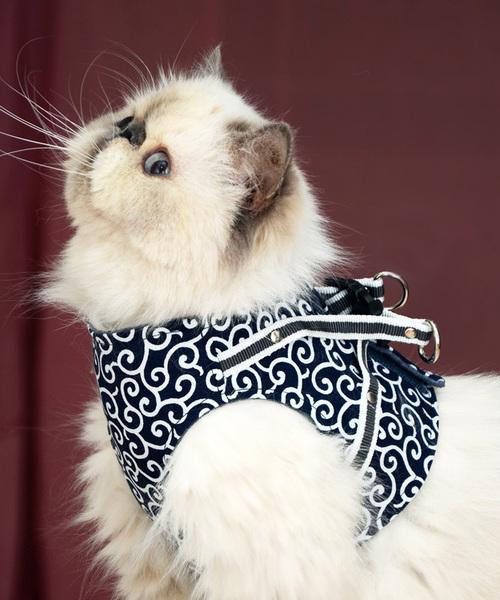 猫の暮らし/ねこのくらし/ハンドルベスト 唐草/猫用品