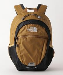 THE NORTH FACE(ザノースフェイス) SmallDay 15L