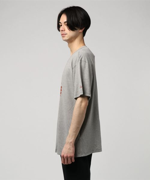 PENDLETON ペンドルトン イエローストーンパークTシャツ クラシックフィット RG357