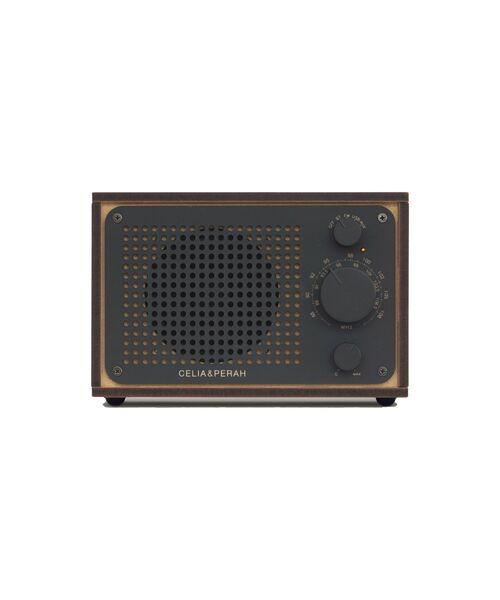 R1 DIY オーディオシステム