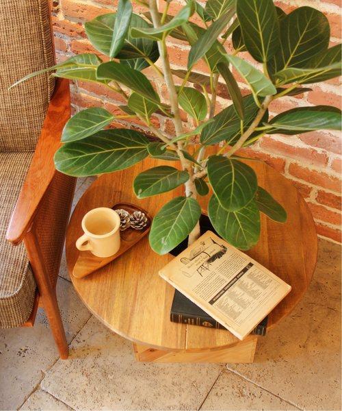 PLT PLANTS TABLE PLT-C60