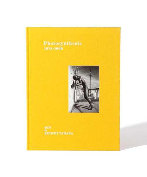 田原桂一 / Photosynthesis