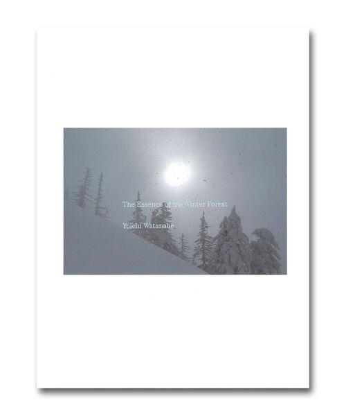 渡辺洋一 / 雪 The Essence of the Winter Forest 森