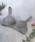 PEACH JOHN(ピーチジョン)の「【ワイヤー入りでも軽い着け心地でストレスフリー、一日中美胸】ワークブラ(ブラ)」|カーキ