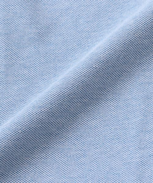 LACOSTE: 別注 Chantilly MODEL ポロシャツ□