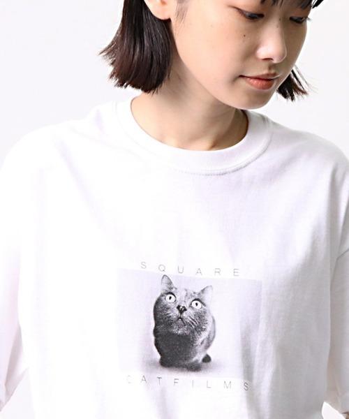 【 SQUARE CAT FILMS / スクウェアキャットフィルムス 】 ネコTシャツ / キャットTシャツ cat t BDZ SCF TEE2
