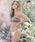 ALEXIA STAM(アリシアスタン)の「Amelia/ワンショルダーバンドゥビキニトップ(水着)」|詳細画像