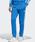adidas(アディダス)の「トラックパンツ [SST TRACK PANTS] アディダスオリジナルス(パンツ)」|ブルー