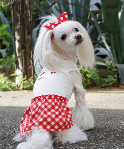 犬と生活/いぬとせいかつ/クールワンピースフララ/犬服(ドッグウェア)
