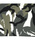 Wpc.(ダブルピーシー)の「雨傘 UNISEX JUMP【2】(長傘)」|詳細画像